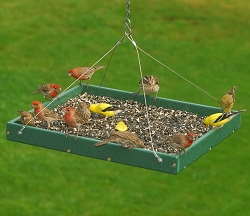 Recycled Plastic Large Hanging Platform Feeder Hunter Green