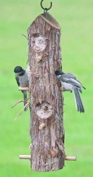 Songbird Cedar Suet Log Feeder