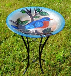 Bluebird Embossed Glass Birdbath with Stand