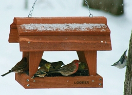 Fly-Through Barn Bird Feeder