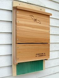 OBC Single Chamber Cedar Bat House