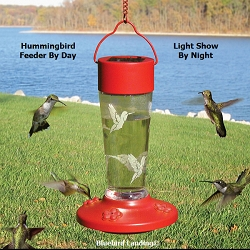 Solar-Powered Color Changing Hummingbird Feeder