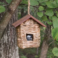 Hanging Grass Roosting Pocket with Roof Set of 6