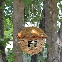 Hanging Grass Roosting Pocket Round Set of 2