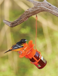 Fliteline Jelly/Jam Oriole Feeder 2/Pack