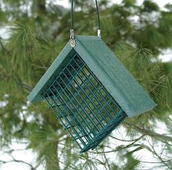 Recycled Plastic Suet Feeder Hunter Green Set of 2