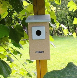 Birds Choice Recycled Bluebird House