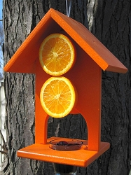 Recycled Poly Double Fruit Oriole Feeder