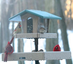 Birds Choice Ultimate Recycled Plastic Bird Feeder System