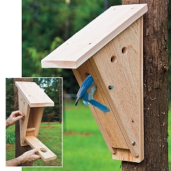 Select Cedar Peterson Bluebird House