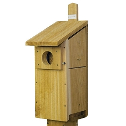 Select Cedar Screech Owl/Kestrel House