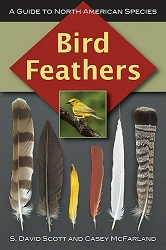 Bird Feathers Guide
