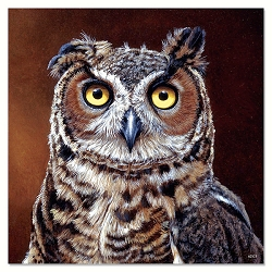 Great Horned Owl Eco Magnet