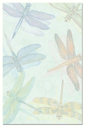 Dragonflies EcoNotes Set of 12