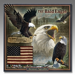 Bald Eagle Wildlife Series 3-D Embossed Tin Sign