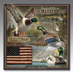 Mallard Duck Wildlife Series 3-D Embossed Tin Sign