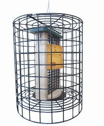 Birds Choice Recycled Plastic Double Suet Feeder with Squirrel Cage