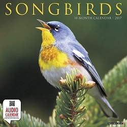 2017 Songbirds Audio Wall Calendar
