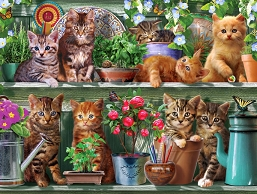 Spring Kittens Jigsaw Puzzle 1000 Piece