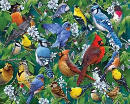 Birds & Blossoms Jigsaw Puzzle 1000 Piece