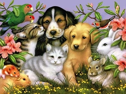 Lovable Pets Jigsaw Puzzle 550 Piece