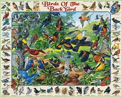 Birds of the Backyard Jigsaw Puzzle 1000 Piece