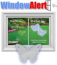 Window Alert Bird Collision Decal Butterfly 8/Pack