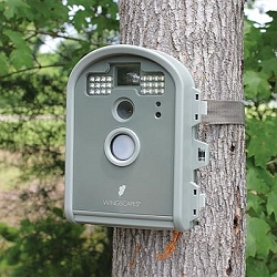 Wingscapes BirdCam Pro Digital Wildlife Camera