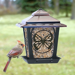 Audubon Butterfly Metal Hopper Bird Feeder