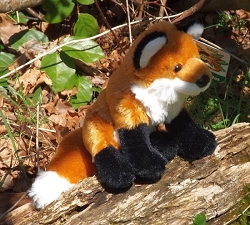 Cuddlekins Red Fox 8