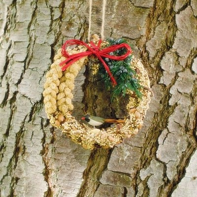 "Rustic Edible Birdseed Wreath 6"" Set of 3"