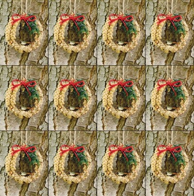 "Rustic Edible Birdseed Wreath 6"" Set of 12"