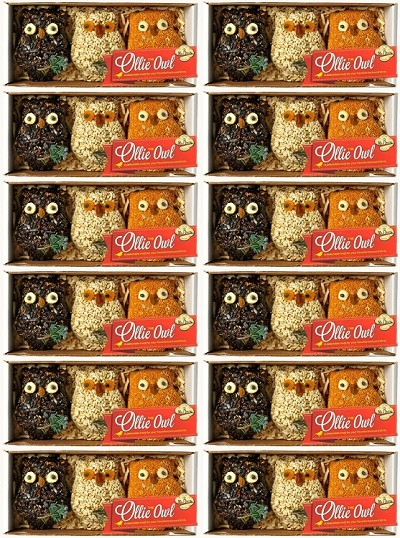 Ollie the Owl Bird Seed Ornament Gift Box 12/Pack
