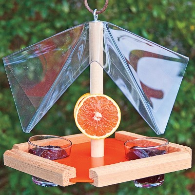 Oriole Feeder Buffet