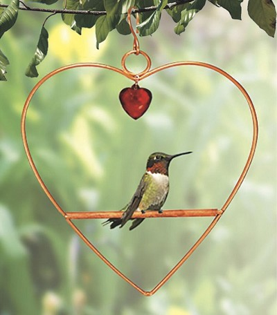 Tweet Heart Birdie Swing Copper or Black Color