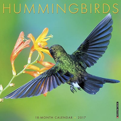 2017 Hummingbirds Wall Calendar