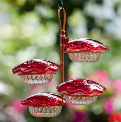 Copper Hummingbird Feeder Quad Cup