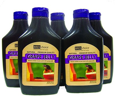 Birds Choice Grape Jelly 20.5 oz. Squeeze Bottle 5/Pack