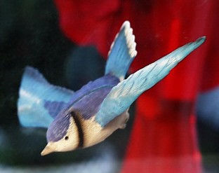 Blue Jay Fly Through Window Magnet