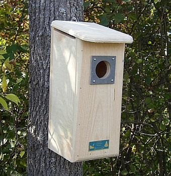 Conservation Three Woodpecker House
