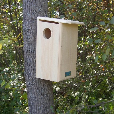 Conservation Squirrel House