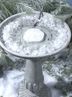 Heated Rock Bird Bath Deicer