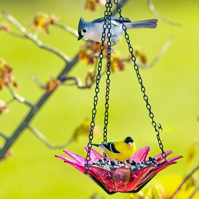 Daisy Hanging Glass Bird Feeder Fuchsia 8""