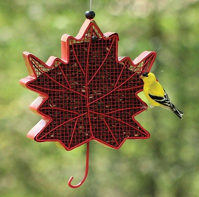 Chapelwood Red Leaf Shaped Wire Sunflower/Peanut Feeder