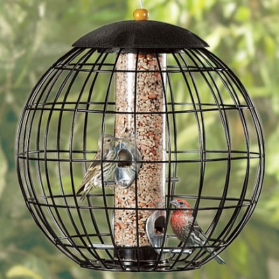 Squirrel Proof Caged Seed Feeder