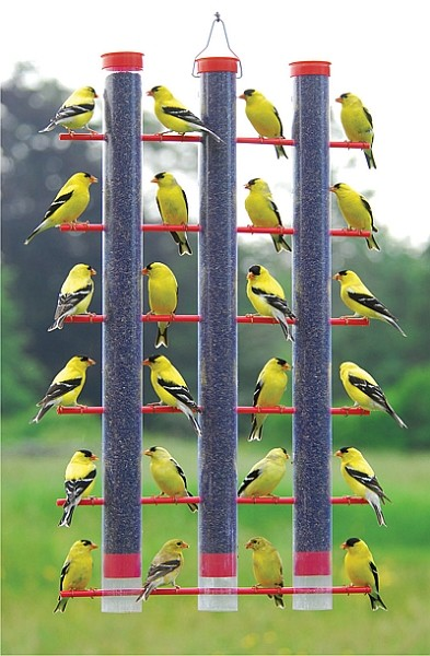 Finches Favorite 3 Tube Feeder