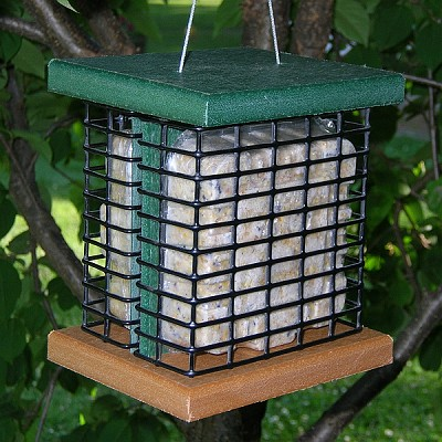 Recycled Poly Double Suet Feeder