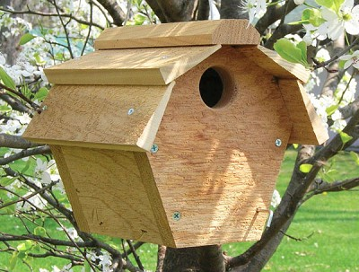 Carolina Wren All Purpose Bird House