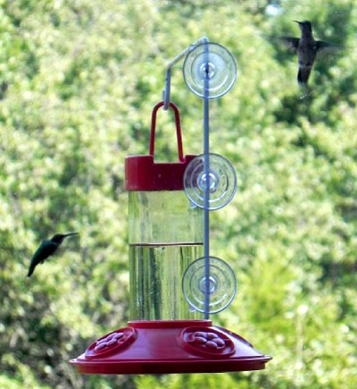 Dr. JB's Clean 16oz Window Hummingbird Feeder All Red
