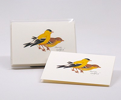 American Goldfinch Boxed Notecard Assortment Set of 8